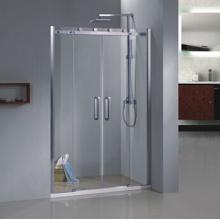 Line Shower Door