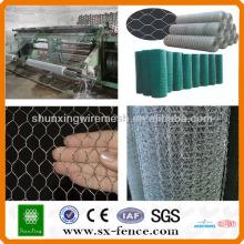 Filetage hexagonal galvanisé à fils hexagonaux (ISO9001: fabricant professionnel 2008)