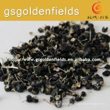 Baya de goji negra seca Wolfberry 100% ningxia