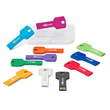 Colorful Key Shape Metal Pen Drive with Free OEM Service