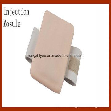 Opisthenar Intravenous Injection Model