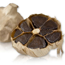 HOT HOT HEALTH BLACK KNOBLAUCH UND US