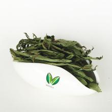 Top grade dried sweet stevia leaf
