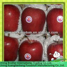 18kg carton apple huaniu
