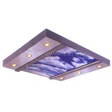Хороший потолочный элеватор (HDHM-450)