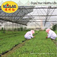 Medlar Specialty Goji Berry Wolfberry Dietary Supplement