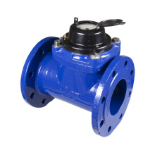 Detachable Woltman Water Meter (cast iron head)
