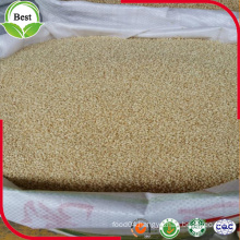 Wholesale Hulled White Sesame with Low Price