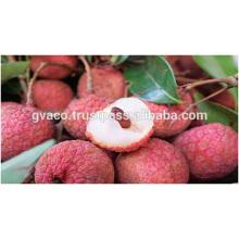 deliciuos fresh lychee - hight quality lychee fresh variety from vietnam