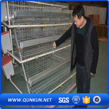 High quality chicken cages of 4 floors