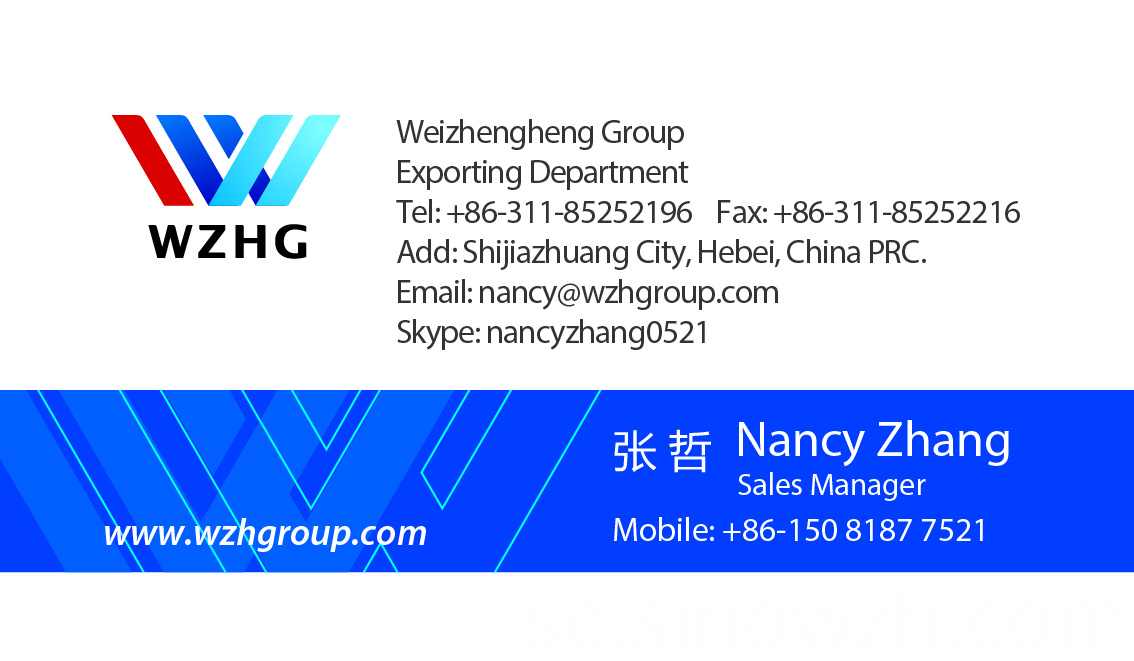 Nancy Zhang WZH Group1