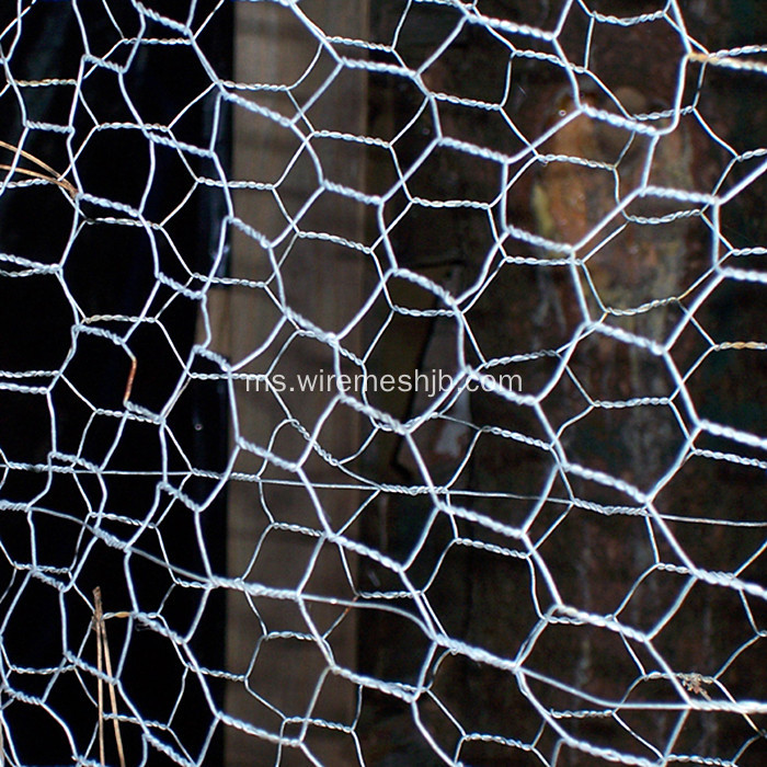 Mesh Galvanized Wire Mesh