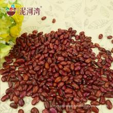 HPS Small Red Black Kidney Beans(GF2)