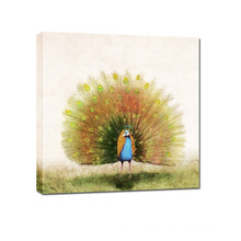 Newest Design Canvas Animal Peacock Watercolor Painting