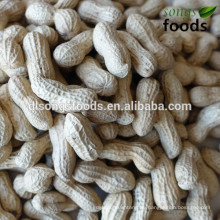 Erdnusspreis pro kg Blei