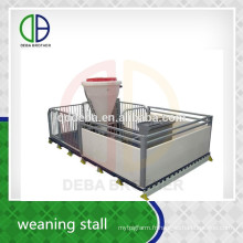 Trempage galvanisé de porcherie d'équipement d'élevage de tuyau d'immersion chaude de tuyau