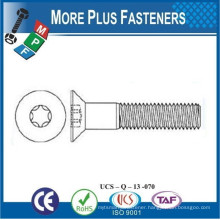 Made In Taiwan 6 Lobe Flat Pan Shoulder Cap Screw Ribbed Neck Carriage Bolt Square Head Bolt