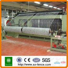 Hexagonal Wire Netting Preise