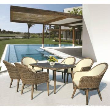 Rattan al aire libre y silla de jardín de la PU