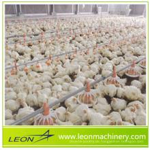 LEON ganze automatische Hühnerstall-Fütterungsanlage für Geflügelfarm