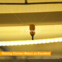 Équipement d'eau potable durable de poulet de volaille automatique