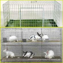 Jaula comercial barato del conejo para la venta caliente en fábrica anping