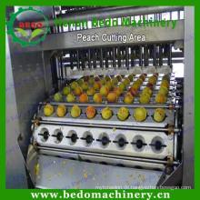 Fruchtsteinentfernungsmaschine / Samenentferner