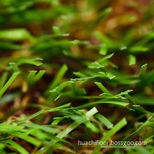 High quality artificial turf grass