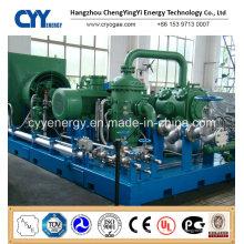 CNG23 Skid-Mounted Lcng CNG LNG Kombi-Tankstelle