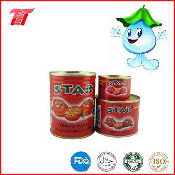 Pasta de tomate orgânico saudável Fromtomato Paste Plant