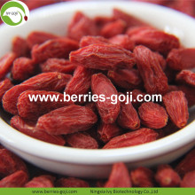 Low Moisture Natural Fruit Premium Common Goji Berries
