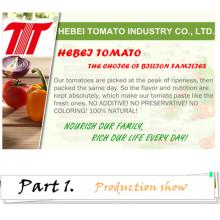 Best Tomato Paste with 70g 210g 400g 800g 850g 1kg 2.2kg 3kg 4.5kg
