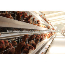 china new design galvanizing best quality best sale chicken egg layer cages in south africa