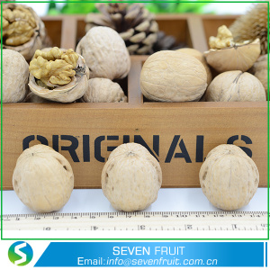 Nutritious Food Dried Style Walnut Shells For Sale