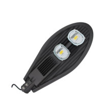 30W to 200W IP65 Bridgelux Chips LED Street Light with Ce RoHS Certificates