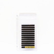 12 Lines 0.15mm Thickness D Curl Standard 10mm Faux Eyelash Extension