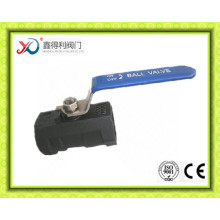 1000psi 1-PC BSPT Ss316 Ball Valve with Hand Lever