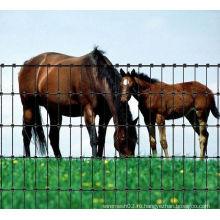 Высококачественный скотный забор для продажи (производство)