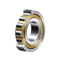 Cylindrial Roller Bearings NU1000 Series