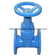 Cast Iron DIN Pn16 Resilient Seated Gate Valves