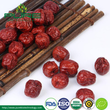 Organic Chinese red jujube /dried jujube slice