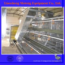 Cages de poulet de couche de conception de haute qualité pour la ferme de volaille (équipement complet de volaille)