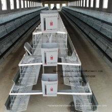 Poulailler en acier industriel de cage de poulet pour la pose du poussin de poulet de chair