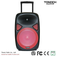 OEM 12 Inches Plastic Trolley Professional Speaker with Battery