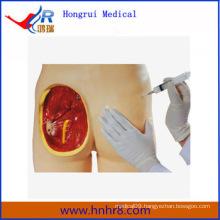 Advanced Intramuscular Injection Manikin