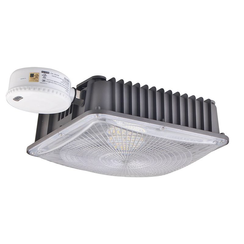 Garage Light with Motion Sensor (17)