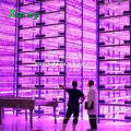 Selling Led Indoor Lighting Led t8 1200mm For Indoor Multi Layer Hydroponics System