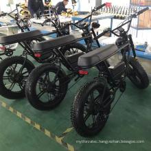 e bike uk warehouse hubless ebike europa bycicle mountain full suspension electric mountainbike