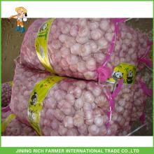 Chinese New Fresh White White Garlic 4.5CM