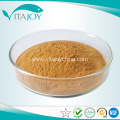 100% natural Organic Milk Thistle extract powder